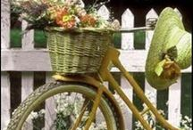 Bicycles in Bloom / Welcome to my boards. Pin whatever inspires you.....no pin limits!!!!!