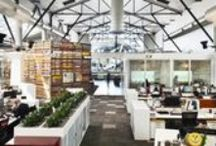 Workplaces We Love! / A collection of workplaces (from NZ and around the world) that we love (and some we have worked on!)