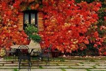 Autumn Inspiration / We love these patio ideas - perfect to enjoy the autumn weather!