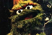 Sesame Street...Krümelmonster und Co....