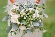 Party/wedding
