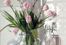 Hello:spring / Frühling, Wärme, Pastelltöne, Blauer Himmel, Blumen, Dekoration