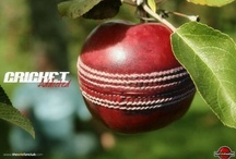 Blades, Cherries, Spikes & Whites- Cricket Gear  / Equipment is more than just a tool in cricket. Its both an art and a craft. As in all aspects of cricket, how it looks is as important as how it works. 