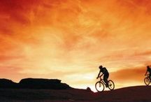 Cycling, Tracks and Tours / Must do, must see, must cycle