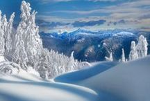 ...the snow falls the next day, the world fell into a winter sleep...