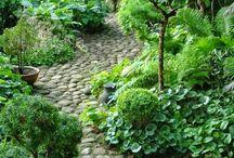 Κήπος / Διαμόρφωση κήπου και είδη φυτών