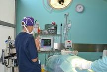 Veterinary / Ambulatori e Cliniche veterinarie
