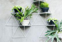 Office plants decor ideas / 3rd Floor space