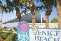 Venice Florida / Spent every summer vacation here as kid with my family...stayed with my aunt who lived there.  Beautiful beach and charming downtown. / by Chestnut Junction