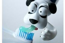 Fun Dental Inspired Products / All things toothy!