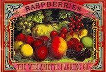 art of raspberries