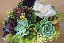 Arte floral y ramos