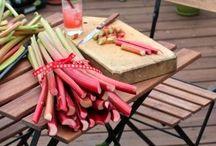 Raparperi-rhubarb