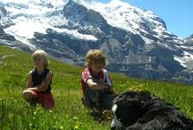 Countries, Holidays: Zwitserland / Wallis / 2007
