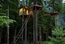 Strange buidings / Strange and wonderful human cabins