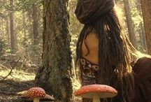Nature, Mushrooms / Paddestoelen
