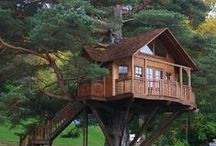"""Tree Houses / """"A tree house should never overpower the tree in which it is built. It should sit lightly in the branches"""". Jeanie Stiles"""