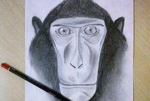 Wildlife crafts & art! / by Selamatkan Yaki