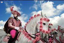 Sardegna La Sartigiglia Di Oristano / La Sartiglia (Sartilla o Sartilia) è una corsa all'anello di origine medievale (1358)che si corre l'ultima domenica e il martedì di carnevale ad Oristano. È una fra le più spettacolari e più coreografiche forme di Carnevale della Sardegna. Ricordi sfumati di duelli e Crociate, colori spagnoleschi, echi di nobiltà decaduta e costumi agro pastorali