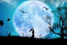 moon / by Tiffani Mattox