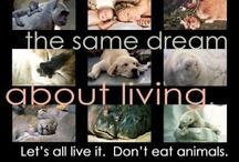 WE ALL DREAM THE SAME DREAM ABOUT LIVING / VEGAN WORLD...VEGAN LIFE STYLE
