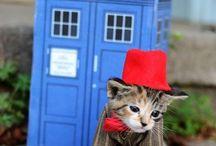 Doctor Who / Do wee doooooo, dweee oooooh!