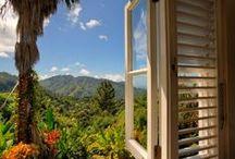 Jamaica !!!! / Sharing the beauty of Jamaica  / by Marsha Rose /  Jamaican Beauty Blog