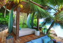Beach Inspiration / Coco Palms - Palm Tree Cushions -        www.cocopalms.com.au