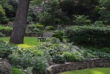 Garden landscaping ideas / by Tammy Cox
