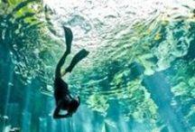 Water / The infinite beauty of water #Water #Nature #Outdoors #Waves #Ocean