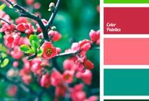 Color Schemes / Color inspiration - because you can never have too many ideas