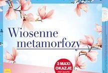 Wiosenne metamorfozy! Gazetka ważna od 14.04 do 27.04.
