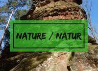 Natur / Wunderschöne, atemberaubend abwechslungsreiche Natur, Naturphänomene, Naturwunder,.... Natur total gibt es hier für alle Naturliebhaber und Outdoor Fans unter Euch!
