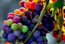 The Beauty of Grapes