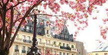 Paris / Paris is always a good idea.
