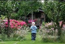 FAMILIETUIN: VAN RAAIJEN HOVENIERS (family garden) / www.vanraaijen.nl