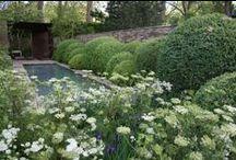 TUINIDEEËN - TUININSPIRATIE GESPOT (garden design inspiration)