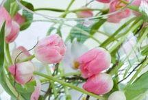 Bloemen en planten / Bloemen en planten