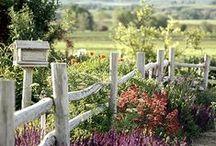 Garden! / Idee per il giardino