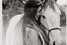 Love Horses / All their Beauty