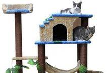 Árboles para gatos
