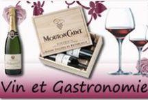 Vins & Gastronomie / Présentation de la gamme Vins & Gastronomie Elydis.