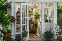 Garten: Im Gewächshaus / Hier keimt, wächst und gedeiht es: Im Gewächshaus beginnt, was später mal ins Beet wandert. Damit das auch klappt, haben wir einige Ideen und Tipps zusammengestellt.