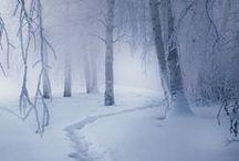 ☁ Winter ✳