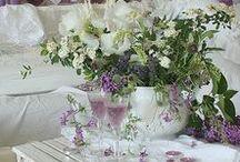 Garten: Duftender Flieder / Flieder blüht je nach Sorte zwischen April und Juni. Er erfreut uns mit seinen schönen Blüten und mit seinem herrlichen Duft. Hier zeigen wir Euch verschiedene Sorten, Vintage Postkarten und Deko Tipps