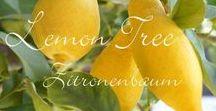 Gastlichkeit: Zitronen / Im Sommer steuern Zitronen eine herrliche Frische zu Getränken, Desserts und Kuchen bei. Hier findet ihr leckere Zitronenrezepte, aber auch sommerliche Deko-Ideen und Küchentipps