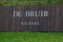 DE BRUIR - Kildare