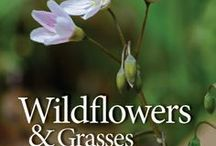 VNPS Bookshelf / Books about Virginia's native plants; how find and identify them, how to use them in landscaping, how to help conserve them. Books that promote and inspire the use of native plants.