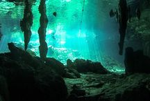 Scuba Diving / Stunning places for scuba diving in the Riviera Maya