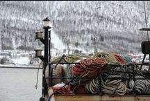 Norwegian Arctic / Tromso